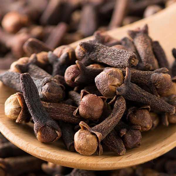 خواص میخک برای مردان لاغری رحم دیابت اسپرم نعوظ چای دارچین و میخک دمنوش برای حافظه پودر میخک با سیر ریزش مو