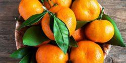 خواص نارنگی ، ۱۰ مورد از خاصیت ها و مضرات مصرف نارنگی