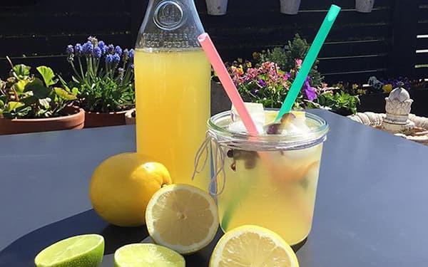 طرز تهیه لیموناد رستورانی شربت لیمو ترش با پوست با عسل بدون شکر داغ کافی شاپ لیمو شکری لیموناد چیست لیموناد نعنایی خوشمزه گازدار خانگی