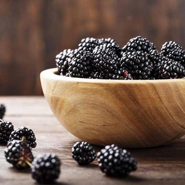 خواص توت سیاه در بارداری مضرات توت سیاه خواص شاه توت سیاه توت سیاه و دیابت درخت توت سیاه خواص درمانی شیره توت خواص برگ درخت توت سیاه