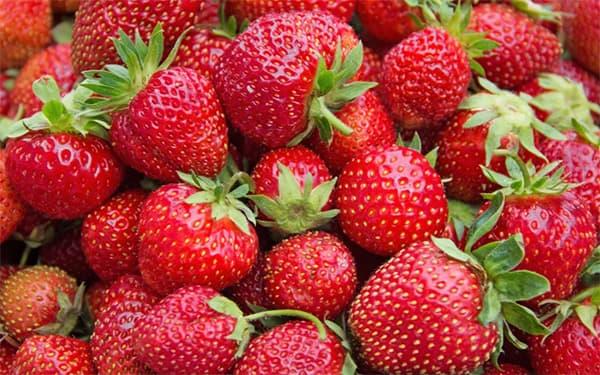خواص توت فرنگی برای پوست برای لاغری برای کودکان در بارداری خشک مضرات توت فرنگی مزاج سیاه چیست برای سرماخوردگی و جنین