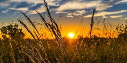 متن و جملات بسیار زیبا و خاص در مورد آفتاب و طلوع خورشید
